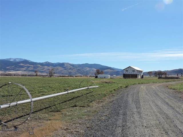 17 Tex's Loop, Alder, MT 59710 (MLS #351202) :: Black Diamond Montana