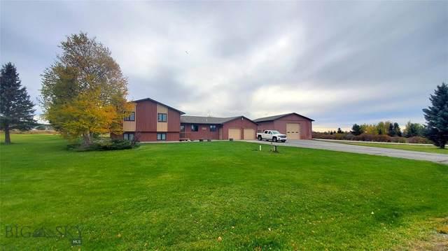 6025 Browning Lane, Bozeman, MT 59718 (MLS #352352) :: Montana Life Real Estate