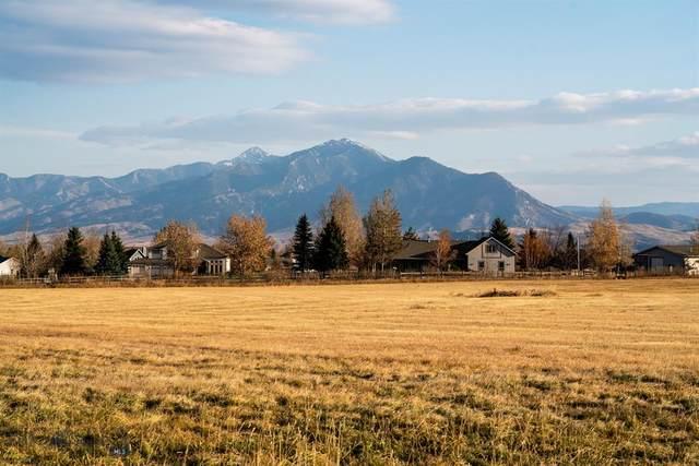 TBD Bigelow Road, Bozeman, MT 59715 (MLS #352367) :: L&K Real Estate