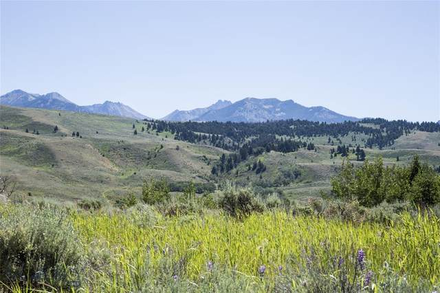 Lot 13 Sun West Ranch, Cameron, MT 59720 (MLS #352377) :: L&K Real Estate