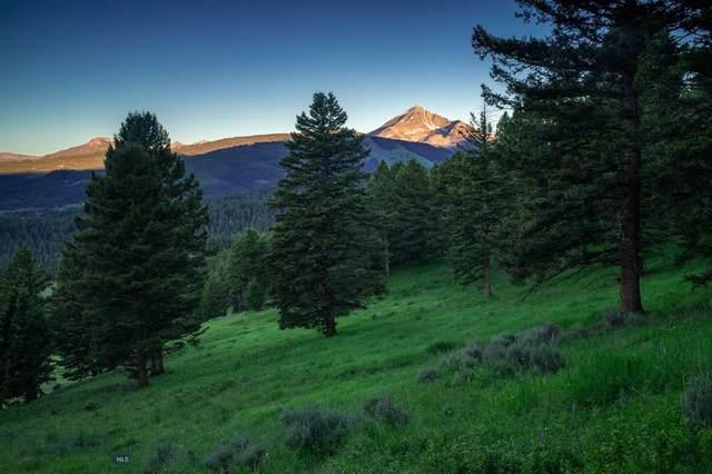 Tract 2A-1B Upper Chief Joseph Trail, Big Sky, MT 59716 (MLS #352384) :: L&K Real Estate