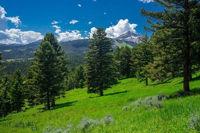 Tract 2A-1A North Fork Road, Big Sky, MT 59716 (MLS #352387) :: L&K Real Estate