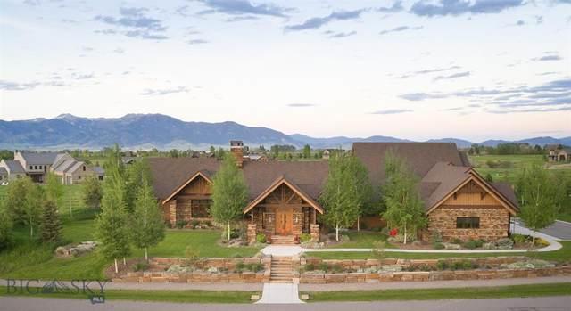 160 Brave Heart Loop, Bozeman, MT 59718 (MLS #352464) :: Montana Home Team