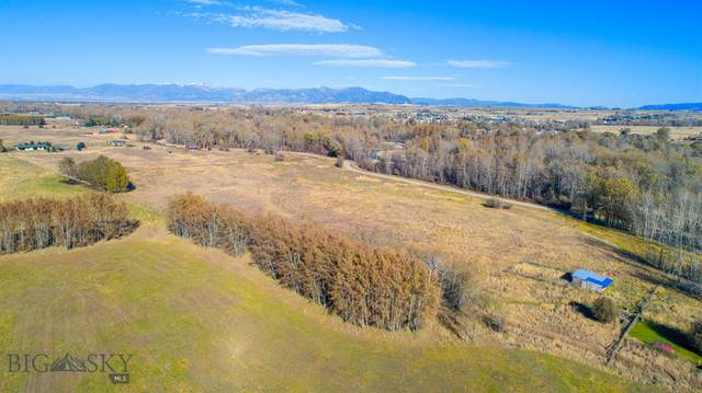 TBD Axtell Gateway Road, Gallatin Gateway, MT 59730 (MLS #352469) :: Montana Home Team