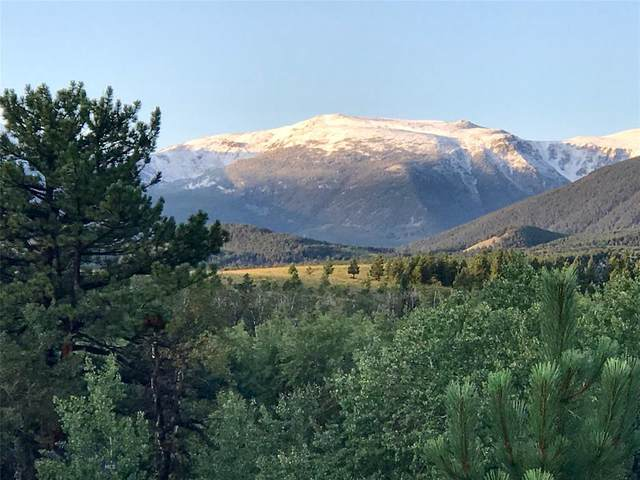 TBD S Fiddler Creek Road, Fishtail, MT 59028 (MLS #352554) :: Black Diamond Montana