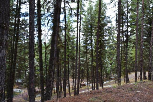 378 Bobcat Lane, Seeley Lake, MT 59868 (MLS #352780) :: Montana Home Team