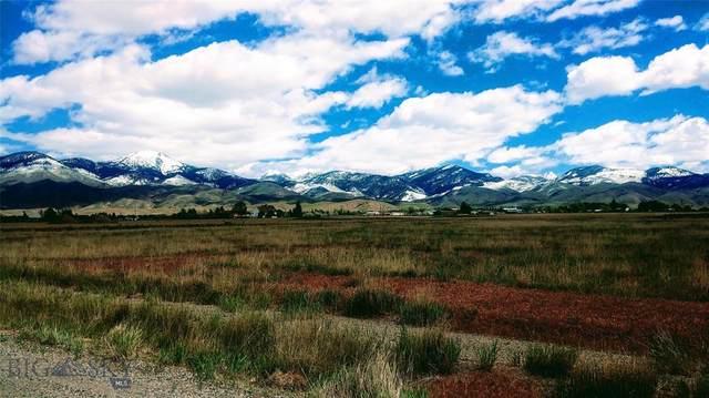 35 Ruby Rock Dr., Sheridan, MT 59749 (MLS #352935) :: Montana Home Team
