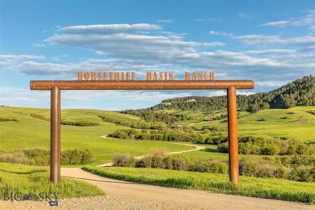 581 Duke Dr - Horsethief Basin Ranch, Lewistown, MT 59457 (MLS #353968) :: L&K Real Estate
