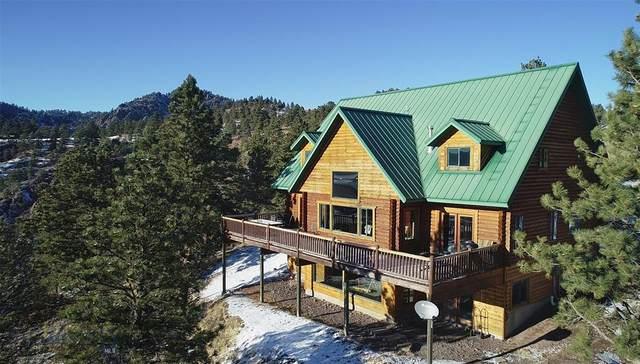 174 Cooper Drive, Cascade, MT 59421 (MLS #353981) :: L&K Real Estate
