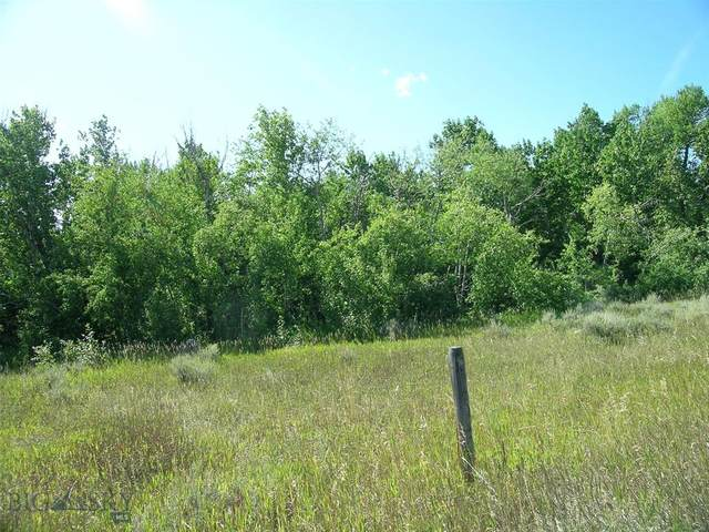 TR 1A-1A Us Highway 212, Red Lodge, MT 59068 (MLS #354006) :: L&K Real Estate