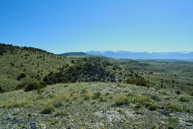 Lot 272 Tbd Clearwater Trail Trail, Manhattan, MT 59741 (MLS #354117) :: Black Diamond Montana
