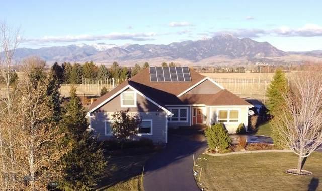 97 Hardin Lane, Bozeman, MT 59718 (MLS #354217) :: Hart Real Estate Solutions
