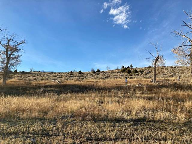 Lot 10 Stone Ridge Club, McAllister, MT 59740 (MLS #354254) :: L&K Real Estate