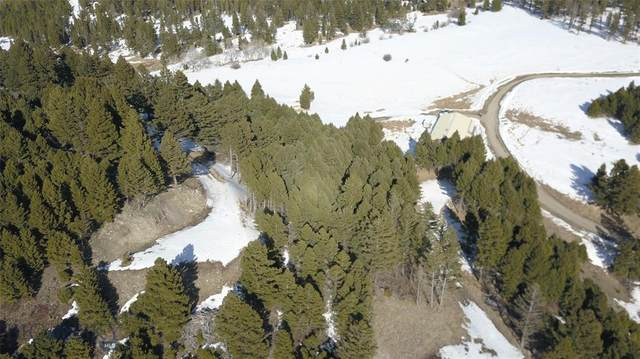 Parcel 3516 Crazy Mountain Peak, Bozeman, MT 59715 (MLS #354393) :: Coldwell Banker Distinctive Properties