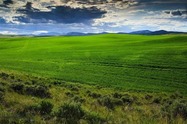 TBD Shoddy Springs Road, Three Forks, MT 59752 (MLS #354399) :: Montana Home Team