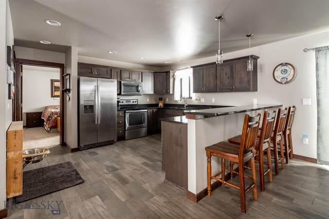 29 Snowy Owl Trail, Bozeman, MT 59718 (MLS #354531) :: L&K Real Estate
