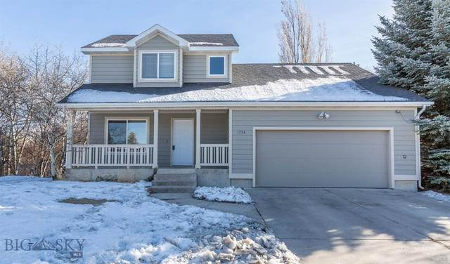 1724 S Willson Avenue, Bozeman, MT 59715 (MLS #354557) :: Montana Home Team