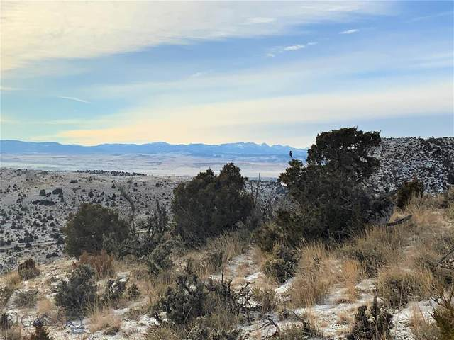 Lot 188 Gallatin River Ranch, Manhattan, MT 59741 (MLS #354626) :: Montana Home Team