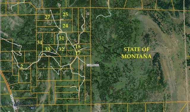 Lot 31 Claim Creek Road, Bozeman, MT 59715 (MLS #354711) :: Montana Home Team