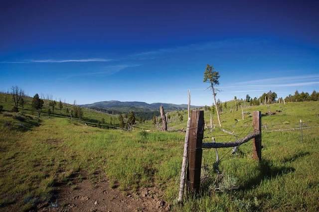88 Upper Greyson Creek Road, Townsend, MT 59644 (MLS #354766) :: Montana Home Team