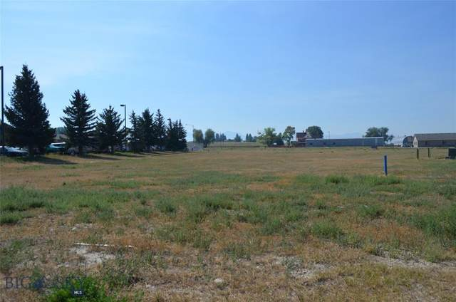 102 State Street, Dillon, MT 59725 (MLS #354883) :: L&K Real Estate