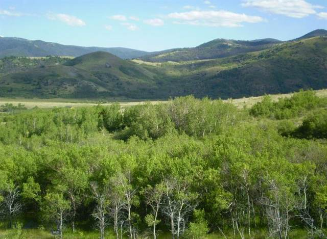 Lot 81-82 Outlaw Trail, Anaconda, MT 59711 (MLS #354958) :: L&K Real Estate