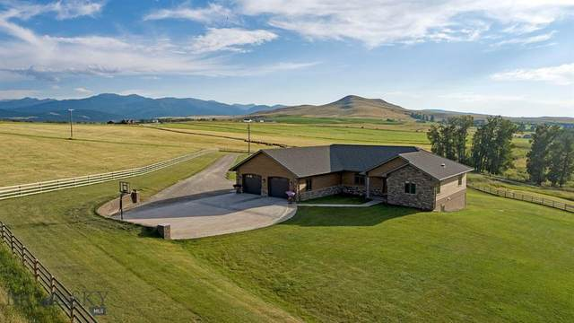 465 Gold Creek Road, Gold Creek, MT 59733 (MLS #355068) :: L&K Real Estate
