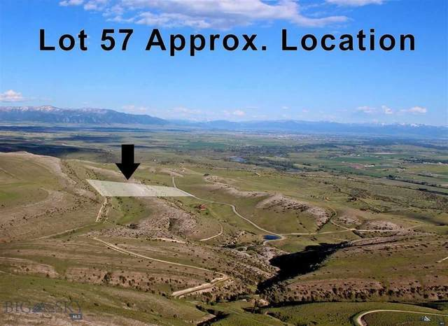 Lot 57 Horseshoe Gulch Road, Manhattan, MT 59741 (MLS #355173) :: Hart Real Estate Solutions