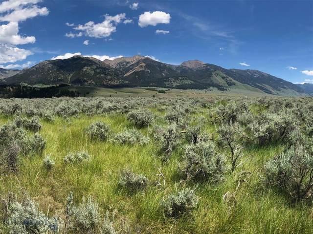 TBD Sun Eagle Lane, Cameron, MT 59720 (MLS #355218) :: Montana Home Team