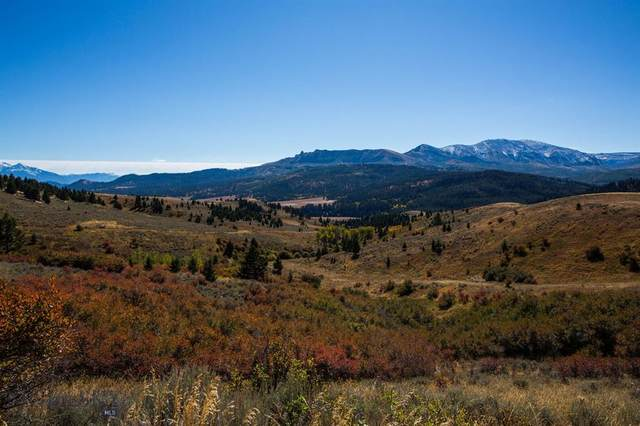 TBD Trail Creek Road, Bozeman, MT 59715 (MLS #355232) :: Hart Real Estate Solutions
