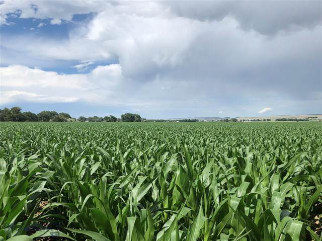 5 Spencer Farms Lane, Fromberg, MT 59029 (MLS #355244) :: Black Diamond Montana