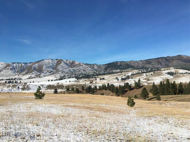 TBD French Basin Road, Darby, MT 59871 (MLS #355269) :: L&K Real Estate