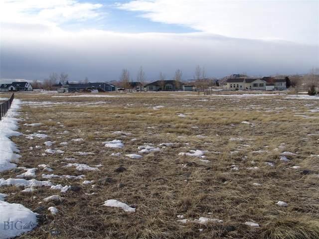 19 Meadowlark Circle, Big Timber, MT 59011 (MLS #355394) :: Black Diamond Montana