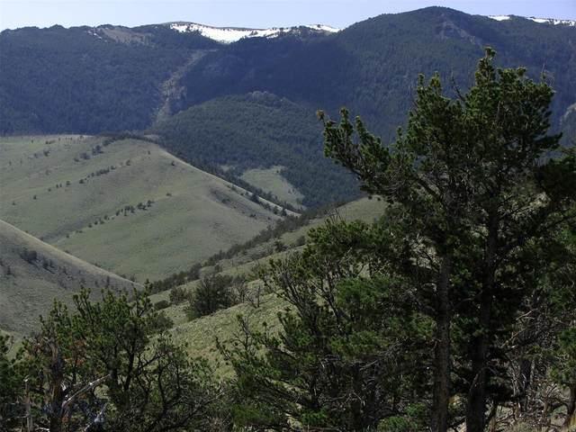 tbd Freedom Trail, Belfry, MT 59008 (MLS #355427) :: L&K Real Estate