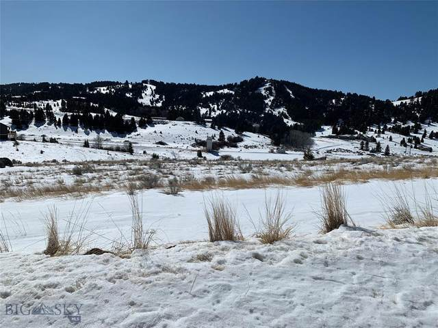 TBD Slalom, Butte, MT 59701 (MLS #355602) :: L&K Real Estate