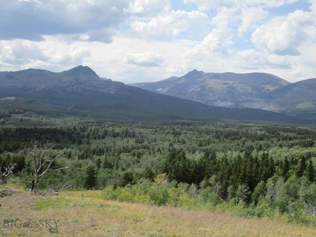 NHN Glacier Avenue, East Glacier, MT 59434 (MLS #355831) :: L&K Real Estate