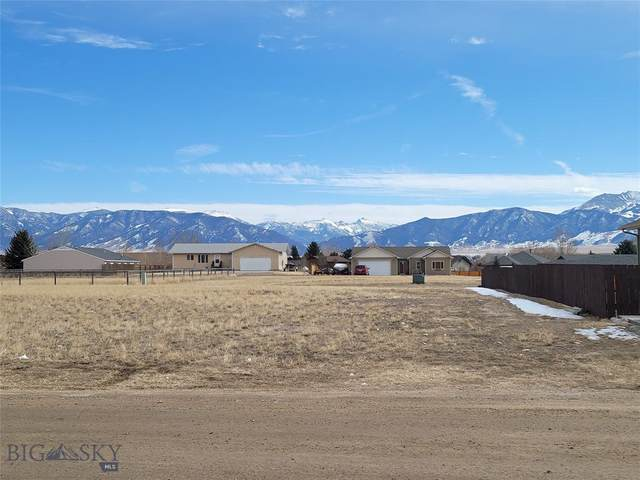 TBD Madison Ave. Avenue, Ennis, MT 59729 (MLS #355883) :: L&K Real Estate