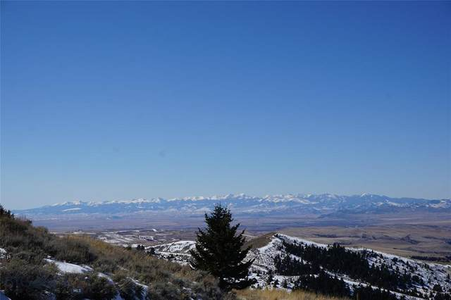 360 Pole Gulch Road, Three Forks, MT 59752 (MLS #355890) :: Coldwell Banker Distinctive Properties