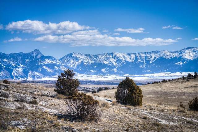 Lot 118 Tbd N River Connection Road, Manhattan, MT 59741 (MLS #355948) :: Coldwell Banker Distinctive Properties