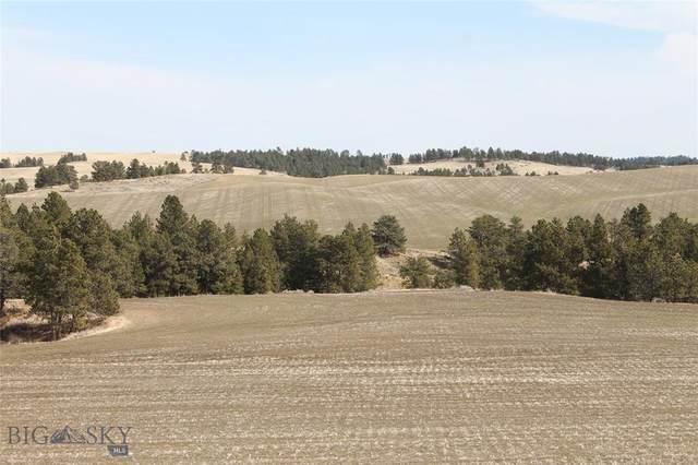 TBD Tbd, Winifred, MT 59489 (MLS #356057) :: Black Diamond Montana