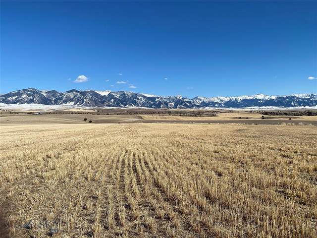 1050 Rocking S7 Road, Belgrade, MT 59714 (MLS #356105) :: Montana Life Real Estate