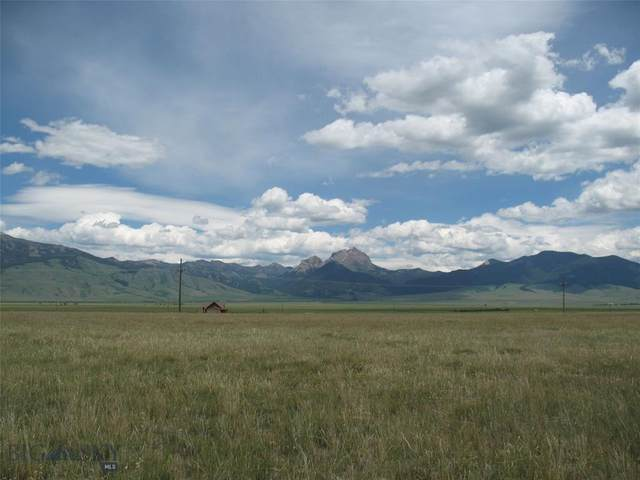 Lot 15 Sphinx Mountain Subdivision N, Cameron, MT 59720 (MLS #356121) :: L&K Real Estate