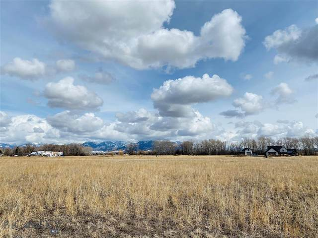 TBD Selway Lane, Bozeman, MT 59718 (MLS #356180) :: Montana Home Team