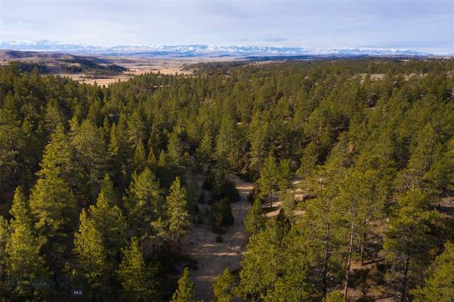 TBD Lower Sweet Grass Road, Big Timber, MT 59011 (MLS #356213) :: Hart Real Estate Solutions