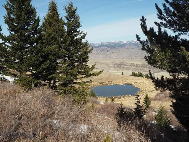 7 Mustang, Livingston, MT 59047 (MLS #356515) :: Montana Life Real Estate