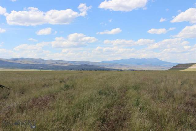 Lot 39 Sphinx Mountain Subdivision, Cameron, MT 59720 (MLS #356530) :: Montana Home Team