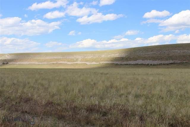 Lot 40 Sphinx Mountain Subdivision, Cameron, MT 59720 (MLS #356532) :: Montana Home Team