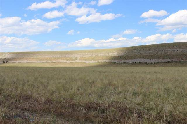 Lot 41 Sphinx Mountain Subdivision, Cameron, MT 59720 (MLS #356533) :: Montana Home Team