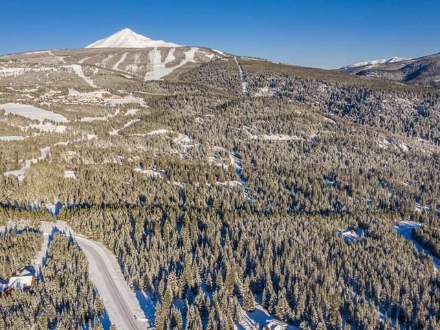 TBD Silverado Trail, Big Sky, MT 59716 (MLS #356614) :: L&K Real Estate