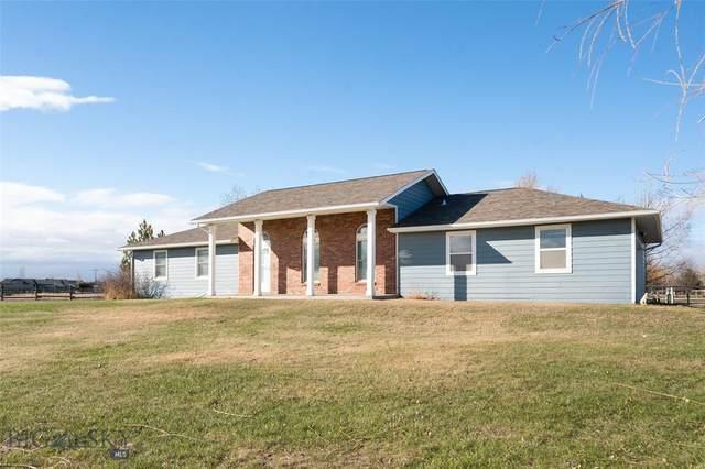2030 Sheepshank Drive, Belgrade, MT 59714 (MLS #356907) :: Montana Life Real Estate